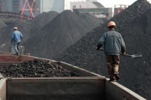 Zartrade Coal Sales